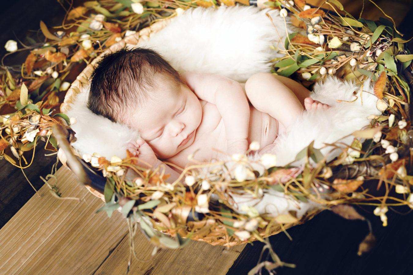 Sarasota Newborn Photography